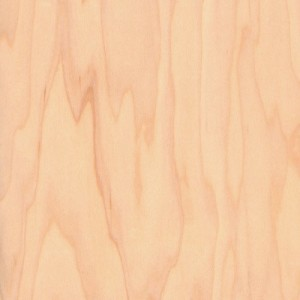 Plywood Maple Multiply Euro Ply Apple Ply Anderson