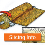 Slicing Information