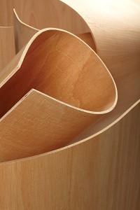 Wiggle Board